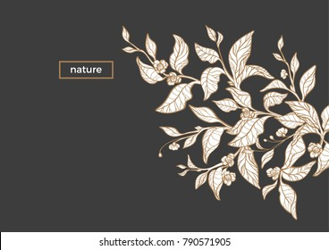 Vector template of organic nature sketch branch of tea. Realistic leaf, flower. Invitation with floral illustration. Flyer of simple card with text and gold frame. Art line design on white background