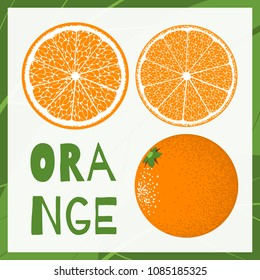 Vector Template with Slice of Orange or Mandarin. Citrus Fruit Isolated. Stylized Flesh of Orange. Delicious Citrus Fruit Illustration. Grapefruit, Mandarin or Orange for Advertizing, Marketing.