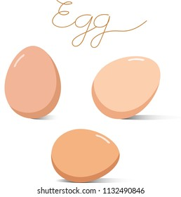 Vector - Three of Chicken Eggs and writing word isolated on white background.