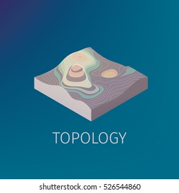 Vector topology isometric icon