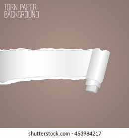 Vector torn edges paper imitation with rolled piece template for ads, poster or web design.