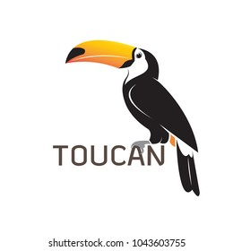 Vector of toucan birb design on white background. Wild Animals. Easy editable layered vector illustration.