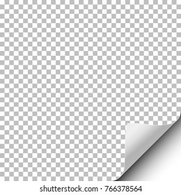 Vector transparent sheet of paper with curled lower right corner and white backdrop under it. Template paper design.