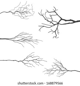 Vector Tree Branch Silhouettes