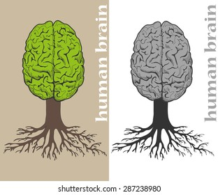 Vector tree formed in cortex of the human brain. Roots of tree formed by lines of text. Text in lines of text unreadable.