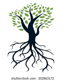 vector tree and roots illustration