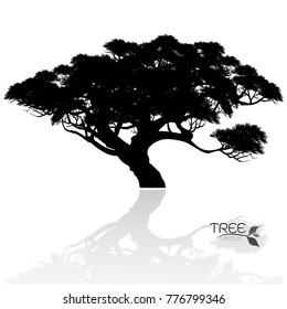 Vector of tree, silhouette icons on white background.