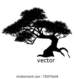 Vector of trees, silhouette icons on white background.