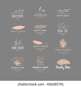 Vector trendy hand drawn beauty, organic cosmetics, alternative medicine, homeopathy logos, badges, emblems, logotypes. Big collection of elegant plant, floral logos.