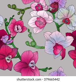 Vector tropic floral seamless pattern with hand drawing orchid flowers