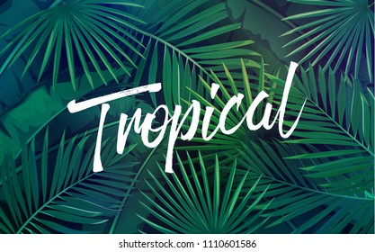 Vector tropical background with leaves. Jungle exotic banana leaf and areca palm. Wallpaper screen summer tropical paradise.