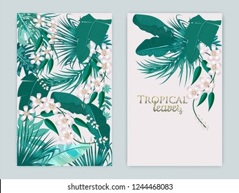 Vector tropical background set in Quetzal Green colors. Botany design for cover. Jungle leaves can be used for brochure template, poster, wedding invitation or card design.