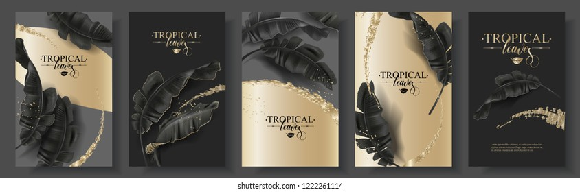 Vector tropical banner set with black banana leaves and gold splashes on dark. Luxury exotic botanical design for cosmetics, spa, perfume, aroma, beauty salon. Best as wedding invitation card