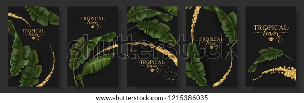 Vector tropical banners set. Banana leaf with gold splash on black background. Exotic botany for cosmetics, spa, perfume, health care products, aroma, tourist agency, summer party invitation