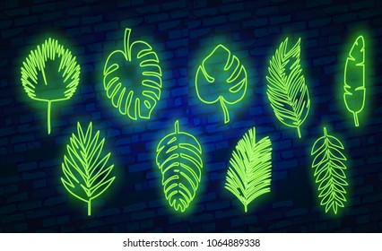 Vector tropical exotic leaves, realistic jungle leaves set isolated on blue background. Palm leaf collection.