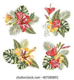 Vector Tropical Flower. Set Tropical Flower and Leaves (Hibiscus, palm leaves, monstera leaves and others). Ideally for design banners, posters, wallpaper, fashion pattern, of advertising and etc.