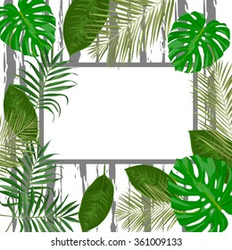 Vector tropical frame with exotic leaves