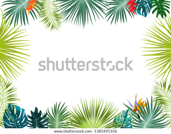 Vector Tropical Jungle Frame Palm Trees Stock Vector ...