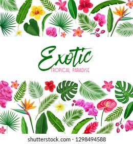 Vector tropical layout page design. Exotic paradise template page design with Jungle exotic leaf monstera, areca palm, royal fern and plumeria. Strelitzia, hibiscus, orchid and ginger flower