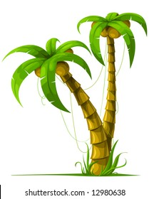 vector tropical palm trees isolated on white background illustration