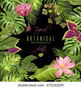 Vector tropical plants frame with monstera, banana leaves, flowers and little frog on black. Exotic design for cosmetics, spa, perfume, health care products. Can be used as wedding, summer background