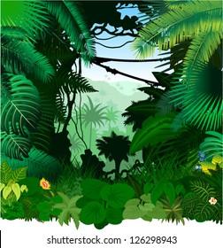 Vector tropical rainforest Jungle