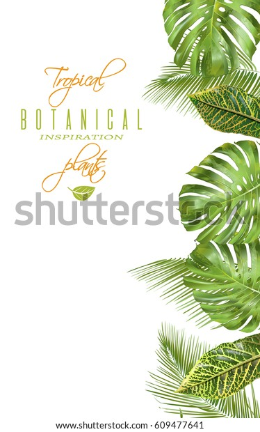 Vector Tropical Vertical Banner Monstera Croton Stock Vector
