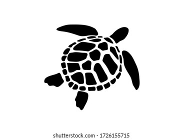 Vector of turtle design on white background.