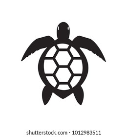 Vector turtle icon - flat color