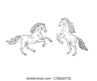 Vector two hand drawn doodle sketch horses set isolated on white background
