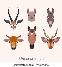 Vector ungulates cloven hoofed animals head set. Lama, deer, antelope, donkey, horse cow bull  illustration isolated. Poster, banner, print, advertisement, web design element object.