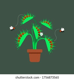 vector of venus flytrap which is carnivorous plant with fly around that with green background