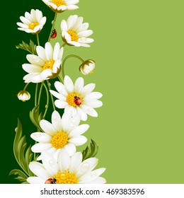 Vector vertical frame with daisies and ladybugs