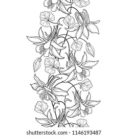 Vector vertical seamless pattern with outline Aquilegia or Columbine flower, bud and ornate leaf in black on the white background. Ornate contour Aquilegia for summer design and coloring book.