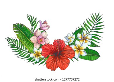 Vector vintage background with tropical bouquet isolated on white. Color botanical illustration with hibiscus, orchid and plumeria flowers and palm leaves. Floral composition.