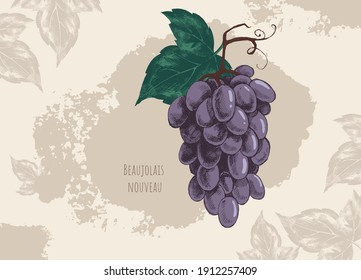 Vector vintage banner with black grape and rough shading on brown background. Imitation of hand drawing on old craft paper with blots and spots. Artwork for packaging design of wine, grape juice, menu