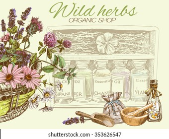 Vector vintage banner with wild flowers and herbs.Design for cosmetics, store, beauty salon, natural and organic products. Can be used like a greeting card. With place for text