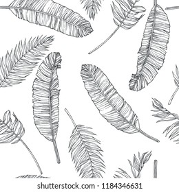 Vector vintage botanical seamless pattern with banana palm leaves in engraving style. Hand drawn texture with tropical plant branches isolated on white. Floral background. Sketch of natural element.