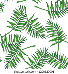Vector vintage botanical seamless pattern with palm leaves in engraving style. Hand drawn color texture with tropical plant branches isolated on white. Floral background. Sketch of natural element