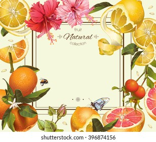 Vector vintage citrus frame with lemon, hibiscus and rose hip.Design for tea, juice, natural cosmetics, baking,candy and sweets with citrus filling,grocery,health care products. With place for text.