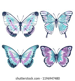 Vector vintage hand drawn set of beautiful colorful butterflies on a white background. Pink and blue butterflies illustration.