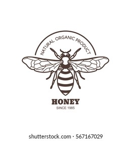 Vector vintage honey label design. Outline honeybee logo or emblem. Linear bee isolated on white background. Concept for organic honey products, package design