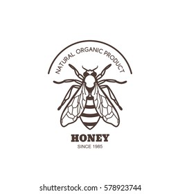 Vector vintage honey label design. Outline honeybee logo or emblem. Linear bee isolated on white background. Concept for organic honey products, package design.