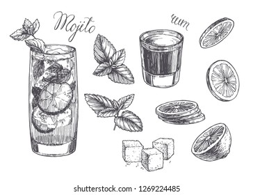 Vector vintage illustration for cocktail recipe. Hand drawn mojito in glass, peppermint leaves, slices of lime, rum and lump sugar. Sketch of ingredients and drink