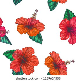 Vector vintage seamless pattern with red tropical flowers isolated on white background. Hibiscus with leaves in engraving style. Hand drawn color floral texture.