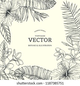 Vector vintage tropical floral background with hawaian flowers. Hand drawn botanical illustration with blooming hibiscus and plumeria and palm leaves in engraving style