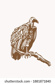 Vector vintage  vulture sitting on the branch of the tree , sepia background, graphical illustration,bird.