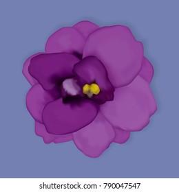 Vector violet flower.