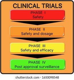 Vector visual scheme of Clinical Trials phases, drug submitted for FDA