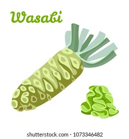 Vector wasabi root and sauce isolated on white background. Color image for template label, packing and emblem farmer market design. Simple icon in flat style.